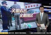 暴力执法,当街棒杀?杭州城管公开辟谣:不存在网传虐狗行为