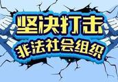 认准这8家 杭州公布合法动物保护类社会组织名单