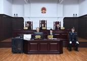上海金融法院首案落槌:被告偿还融资款本息等1.2亿元