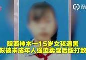 陕西神木通报15岁少女被害案:6嫌犯全落网 均未成年