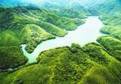 武平:绿色信贷 打造林业金融升级版