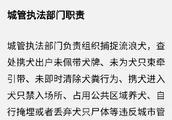 重拳!12月1日起青岛专项整治违规养犬