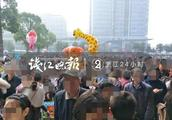 杭州富阳野生动物世界一只老虎出逃?真相来了