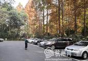 12月开始请注意 杭州西湖景区停车收费标准有新变化