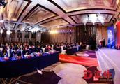 深圳国际公益学院首批学员毕业 校友公益实践直接受益人超2亿人次