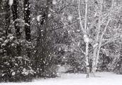 在丰县,我们小时候是这样过冬的,你还记得吗?看懂的人都老了……