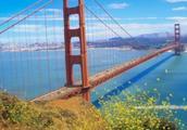 """美国一座最悲惨的大桥,躺枪30年,被电影剧情""""摧毁""""几百次!"""