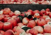 """是的,你没看错!今年,卖""""苹果""""是最赚钱的!"""