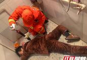 湖南岳阳:手机不慎掉进厕所 男子伸手捞被卡住手臂