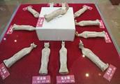 """十二生肖""""亮相""""乌鲁木齐市博物馆"""