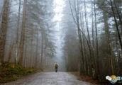 雾对身体有害吗 大雾对人体有什么影响
