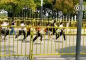 """190120 华晨宇粉丝追音乐节现场合集:真 · """"追""""星现场"""