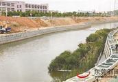 东莞水务局全面打响河涌整治攻坚战 重点整治10条黑臭水体115条污染河涌