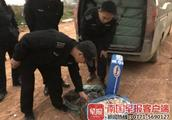 8吨疑似走私冻肉在南宁被查处,7辆面包车和1辆大货车被暂扣