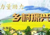 """浙大高材生回洞桥老家,在""""网红村""""开民宿"""