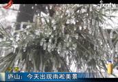 江西:庐山2月15日出现雨凇美景