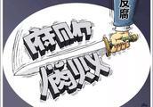 惠东县中小企业局副局长秦飞帆涉嫌严重违纪违法,接受调查