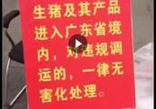 私家车年后带猪肉制品不能进广东?官方回应:可带经高温处理肉脯