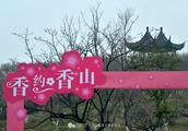 张家港:香约香山,风景这边独梅