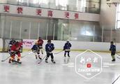 10天!哈尔滨市中小学冰球冠军将在他们中间产生
