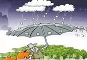 """你是否注意过农业保险中的""""免赔条款""""?这样做可以保证你的利益少受侵害!"""