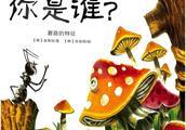 有声绘本故事《你是谁》蘑菇的特征
