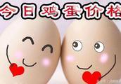 鸡蛋:今日鸡蛋价格多少?2019.1.18鸡蛋价格行情走势!