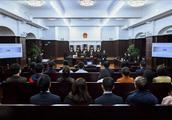 上海金融法院首用证券纠纷示范判决,投资损失核定引入第三方