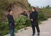 内江这位总经理放弃20万年薪辞职返乡当村干部,干出了一番大事