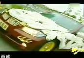 2010万天价宝马车,车身用四支完整的猛犸象牙雕刻装饰