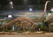 世界上最好的恐龙博物馆是自贡恐龙博物馆