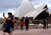 更多国际大牌抢滩澳大利亚,不远万里只为把东西卖给中国游客
