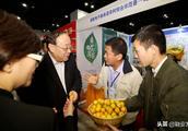 广西融安:融安金桔在2018全国农产品产销对接行活动上受欢迎!