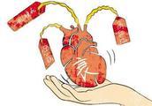 心脏病终结者!猪心脏在狒狒体内跳动195天,人体试验指日可待!