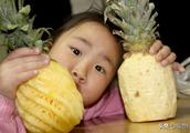 凤梨和菠萝是同种水果?有人不懂还妄下结论,看看果农怎么说