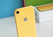 买iPhone XR的都是傻子?你错了,这是目前最香的苹果手机