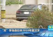 """希望明年是一个好年!""""灾""""字当选日本2018年度汉字"""
