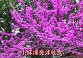 贵州山歌对唱《今生不能没有你》唱得真好听!