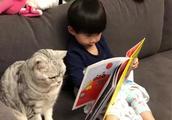今天猫咪没有打扰安安学习,竟然还在一旁监督她看书,真乖!