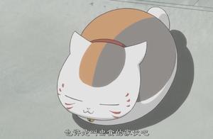 夏目友人帐:猫咪老师突然进来,还直接给了夏目一掌,要打架啊