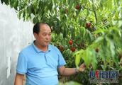 """荣成海波生态农场于海波:咬住""""生态""""不放松"""