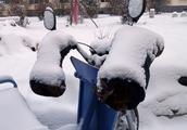 最低零下30度!呼伦贝尔入冬首场大雪街头众生相,井盖萌太十足