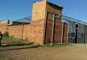 南非劫匪开枪投瓦斯乱射华人商铺 侨胞一家4人伤