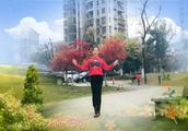 三合家园姐妹广场舞《花开的时候你就来看我》